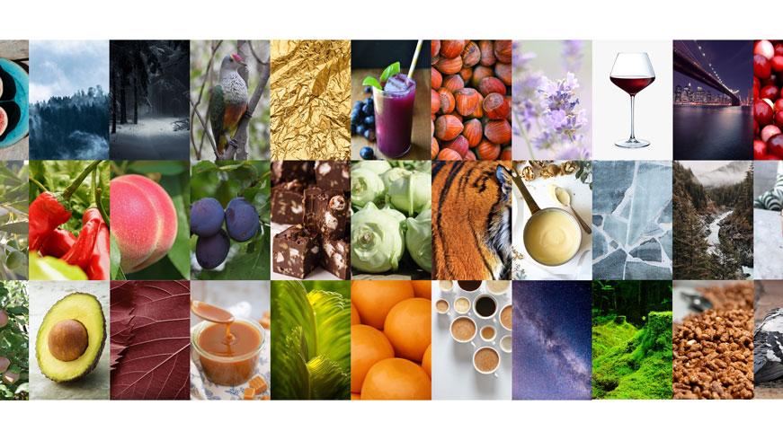 Collage de Imágenes Variadas
